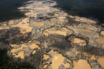 50K people exposed to high levels of mercury in Peruvian jungle, U.S. study shows